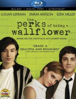 Хорошо быть тихоней / The Perks of Being a Wallflower (2012) HD 720 (ru, eng)