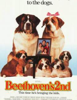 Бетховен 2 / Beethoven's 2nd (1993) HD 720 (RU, ENG)