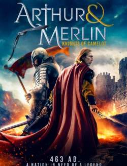 Артур и Мерлин: Рыцари Камелота / Arthur & Merlin: Knights of Camelot (2020) HD 720 (RU, ENG)