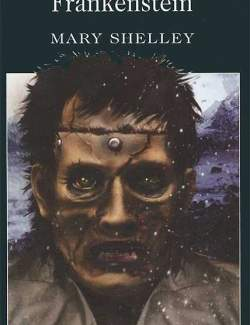 Франкенштейн / Frankenstein (Shelley, 1818) – книга на английском