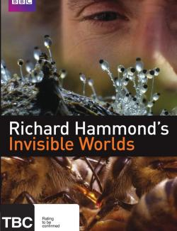 BBC: Невидимые миры (сезон 1) / Richard Hammond's Invisible Worlds (season 1) (2010) HD 720 (RU, ENG)