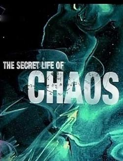 BBC: Тайная жизнь хаоса / The Secret Life of Chaos (2010) HD 720 (RU, ENG)