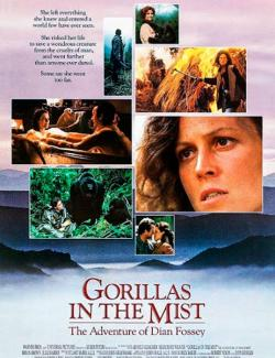 Гориллы в тумане / Gorillas in the Mist: The Story of Dian Fossey (1988) HD 720 (RU, ENG)