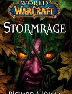 Ярость бури / World of Warcraft: Stormrage (Knaak, 2010) – книга на английском