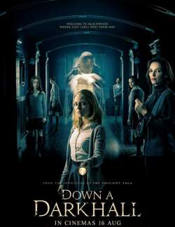 Дальше по коридору / Down a Dark Hall (2018) HD 720 (RU, ENG)